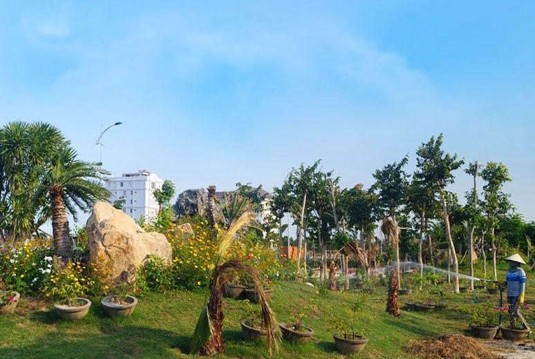 công viên cây xanh và đường dạo mát