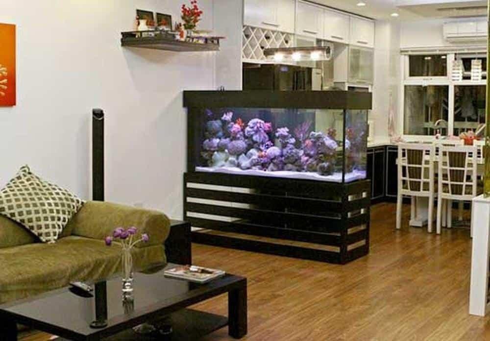 Tránh đặt bể cá dưới bàn thờ, sau ghế sofa, cạnh nhà vệ sinh,….